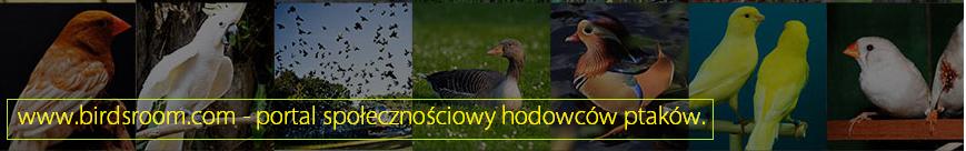 Portal hodowc�w ptactwa
